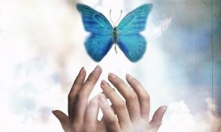 papillon-mains-bonne-sante-mentale