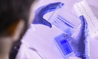 coronavirus-tests