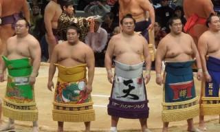 sumo-obesite