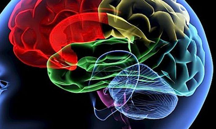 Maladie d'Alzheimer actuellement