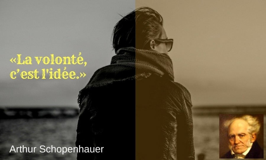 citation volonte Schopenhauer