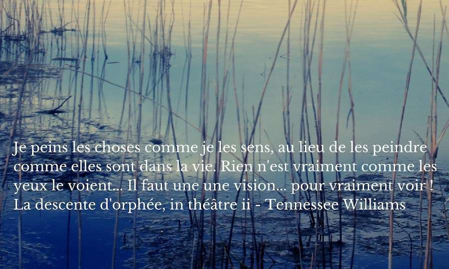 citation sens de la vie Williams