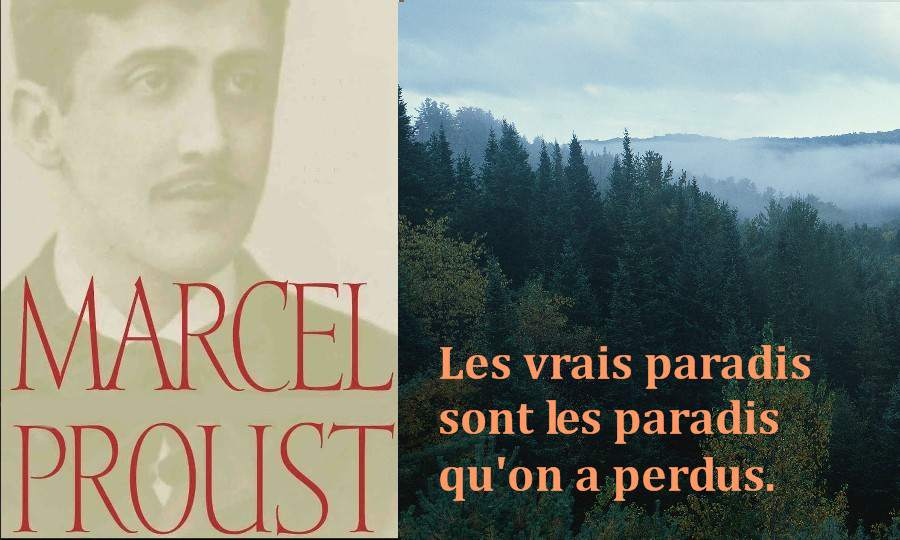 citation proust4