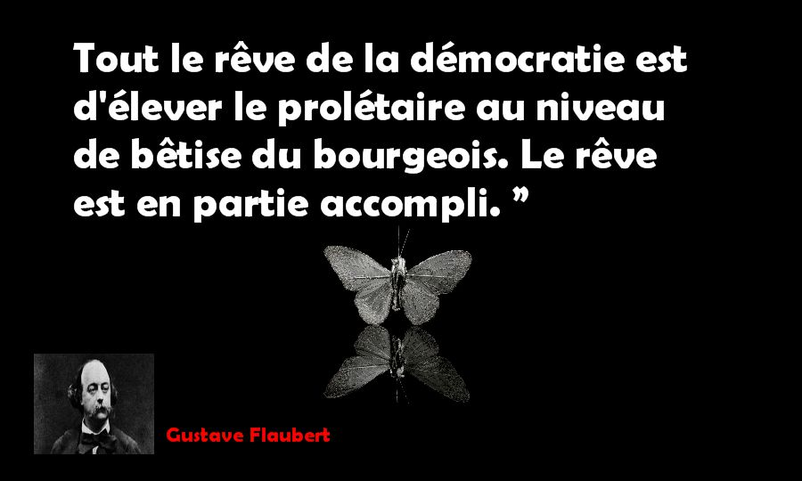 citation flaubert